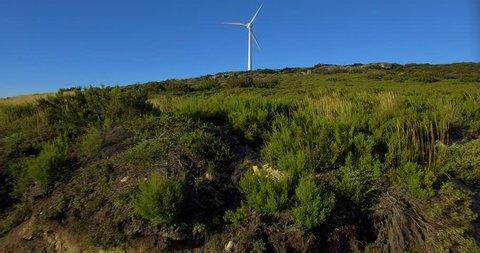 Wind Power Turbine in Portugal