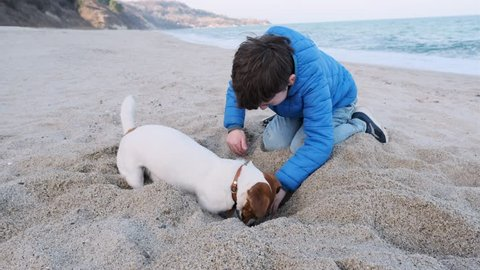 Happy boy and his dog Jack Russell Terrier breed on the beach and digging a hole in the sand where a bone is buried against the backdrop of sea waves and a blue sky. Family weekend. Pet