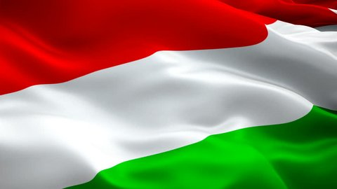 Hungarian flag waving in wind video footage Full HD. Realistic Hungarian Flag background. Hungary Flag Looping Closeup 1080p Full HD 1920X1080 footage. Hungary EU European country flags Full HD
