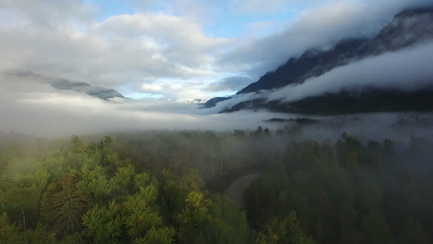 Aerial: Thick Forest Covered with Fog Leading Up to Mountains, Blue Sky in Bella Coola, British Columbia | Shutterstock HD Video #1027874447