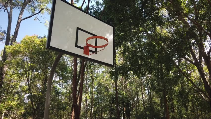 A basketball hoop in the middle of a forrest. A still close to medium shot of a basketball hoop or ring in the middle of an Australian forrest.