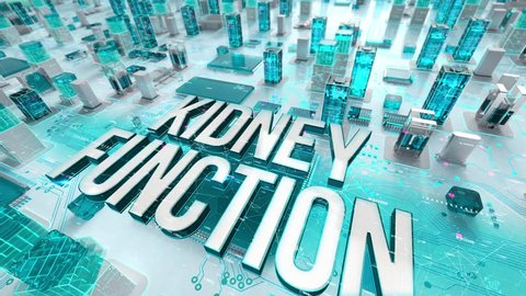 Kidney Function with medical digital technology concept