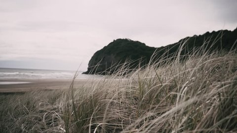 Moody mist passes over north Piha beach behind the sand dunes as the wind howls and the waves crash