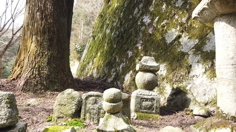A pan shot of small statues outside of a shinto shrine on a rural mountain trail in Japan.