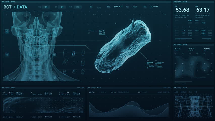 Medical technology screen of a human skull and 3D scan of bacteria with data as it monitors the patient's status | Shutterstock HD Video #1028934107