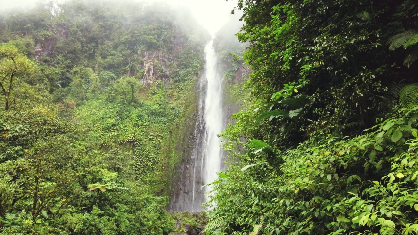 Idyllic waterfall and amazing nature. Wild river in jungle forest. Chute du Carbet, Guadeloupe, Caribbean. #1029478247
