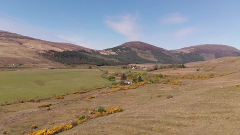 Drone View Of Gorse Plants In Valley Glenbrittle Isle Of Skye Aerial Summer 4K Cine D