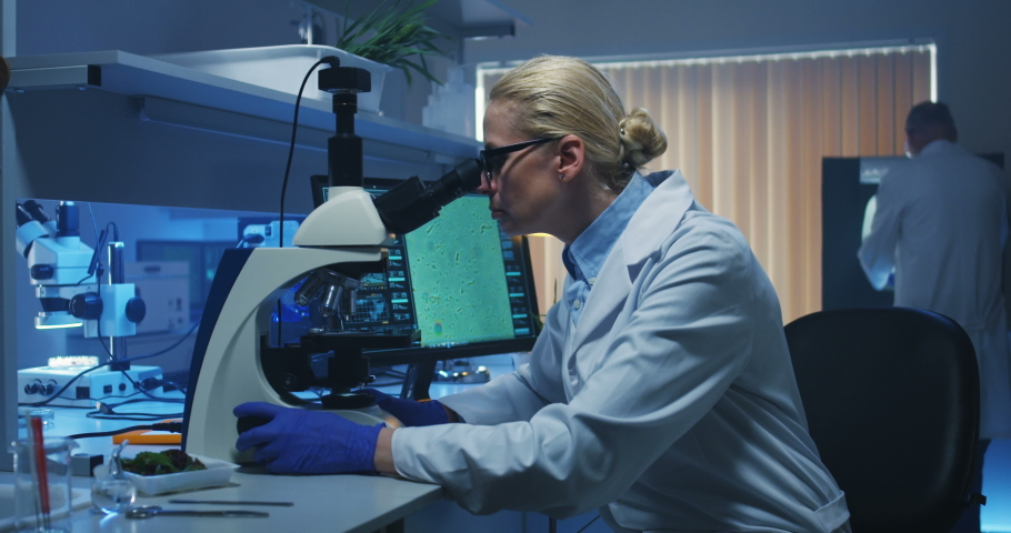 Medium shot of a female biologist looking at camera while sitting at her desk in a lab | Shutterstock HD Video #1030179227