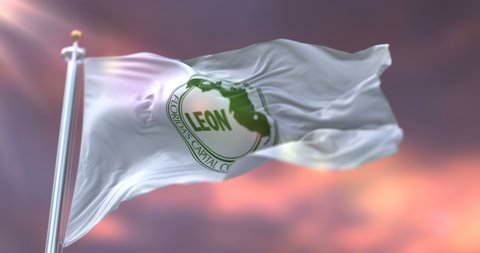 Flag of Leon at sunset, county of the state of Florida, in United States - loop