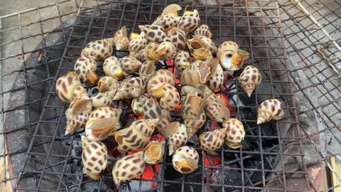 The shells are being grilled on the grill above the hot fire, it is a month and splashes.