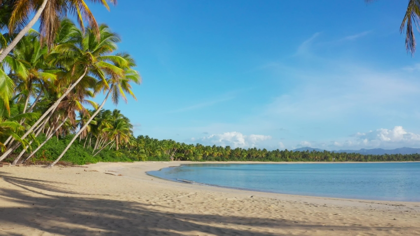 Dominican Republic beaches. Blue lagoon and palm grove on Amazing Caribbean beach. Summer holidays in paradise. Punta Cana vacation. Sea, palm trees, beach and sky. The best beaches in the world
