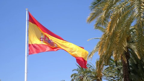 A big Spanish flag blows in the wind next to palm trees in the center of the city Elche at the Palm Park. The sky is blue and the sun is shining. Slow motion 4k.