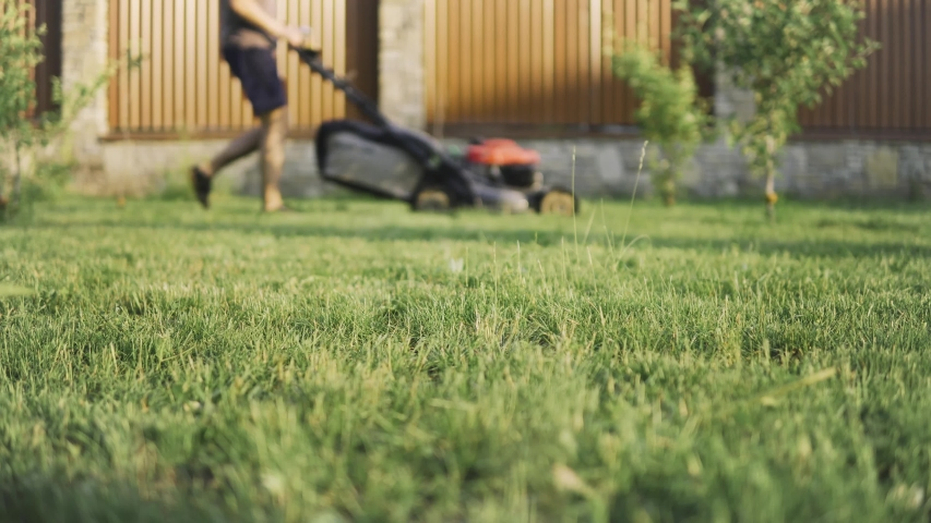 Trimmed grass in the foreground and a man mowing grass in the blurred background   Shutterstock HD Video #1031543657