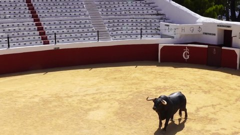 Bullring Stock Video Footage - 4K and HD Video Clips   Shutterstock