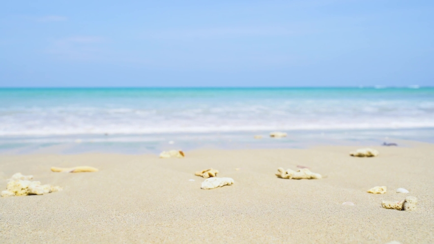 Phuket Thailand beautiful beach background white sandy tropical paradise island with blue sky sea water ocean 4k hermit crab | Shutterstock HD Video #1033276097