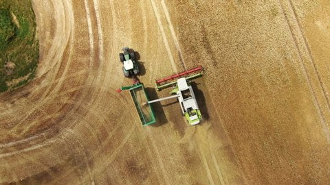 Germany, mecklenburg - 02  juli 2019 - claas lexion 780-740 combine  harvester - aerial view drone shot of claas lexion the biggest combine  harvester at harvesting golden ripe wheat field in germany