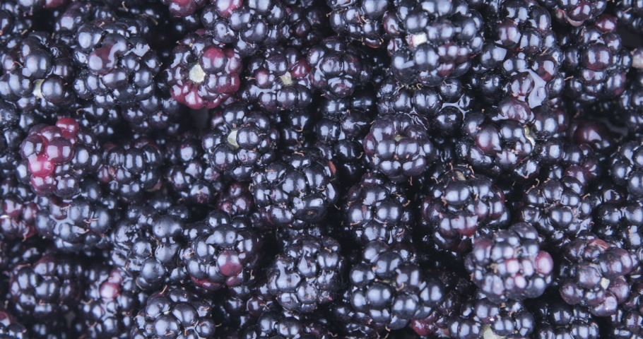 Mulberry pile on turning plate | Shutterstock HD Video #1035171647