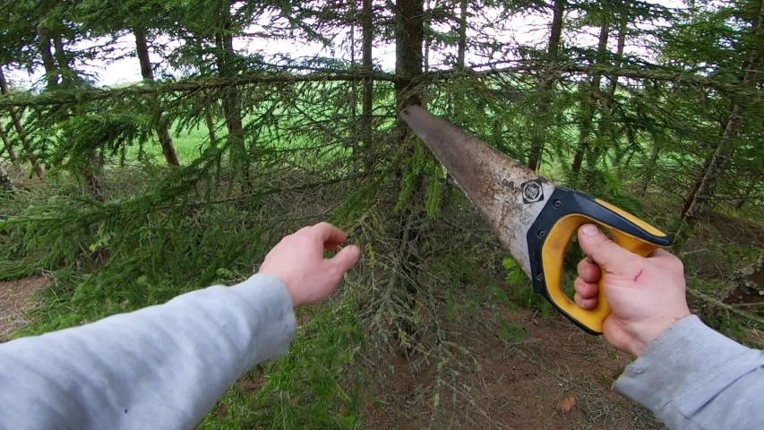 A man with a saw cuts the branches of a fir tree in a coniferous forest. Slow motion first person view. | Shutterstock HD Video #1035173897