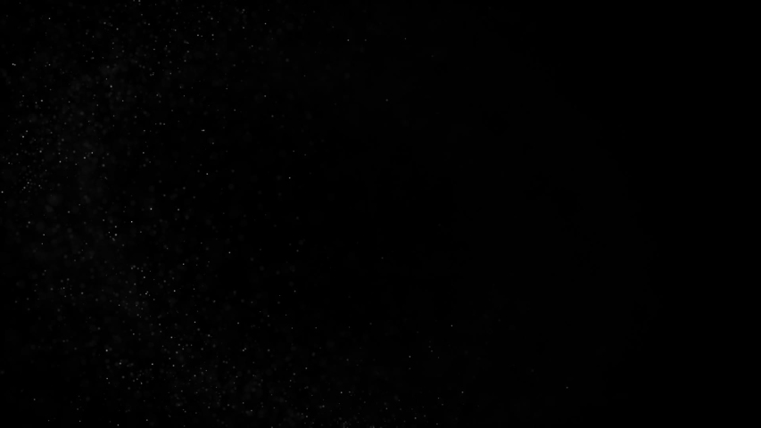 Floating organic dust particles shimmering on a black background. Particles swirling randomly as if blown by wind Particles moving quickly through space   Shutterstock HD Video #1035246737