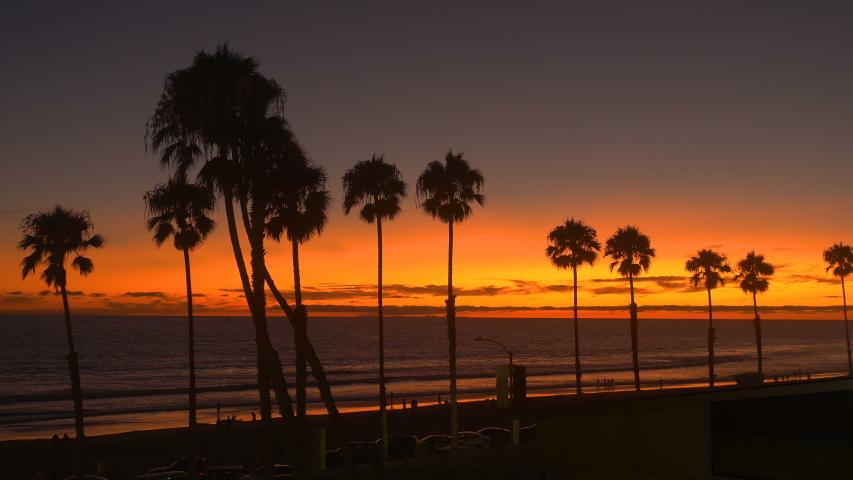 Palm Tree Sunset Oceanside California | Shutterstock HD Video #1036316027