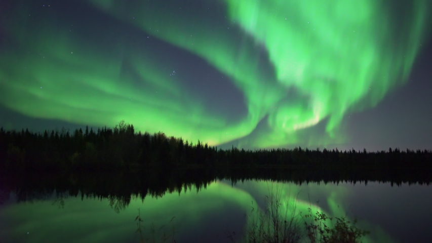Realistic real time (not timelapse) aurora borealis (northern lights) dancing over trees and lake in Alaska | Shutterstock HD Video #1036783787