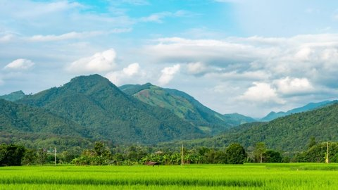 Time-Lapse Rice plots or rice fields and mountainous scenery.