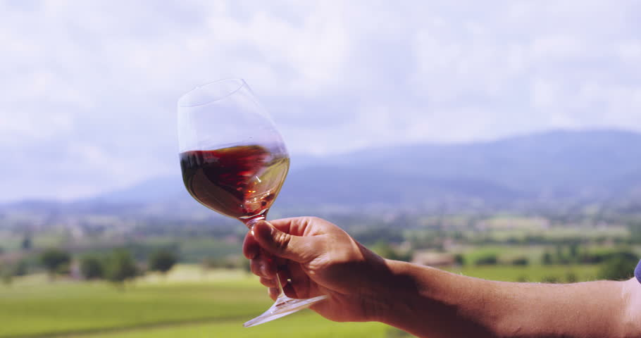 Slow motion of middle aged sommelier mix and controls the color of red wine poured in transparent glass on a scenic vineyard panoramic background (close up) | Shutterstock HD Video #10369877