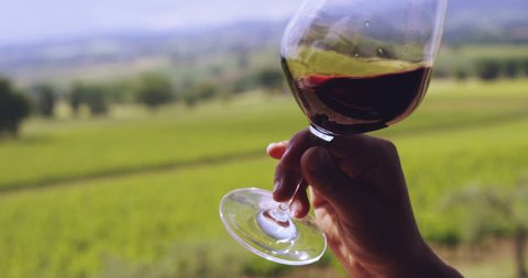 Slow motion of middle aged sommelier smells red wine poured in transparent glass on a scenic vineyard panoramic background (close up)