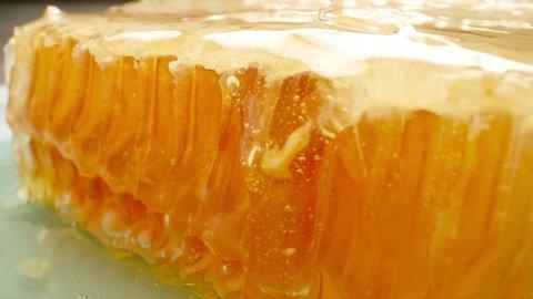 Natural Eco Food Concept. Honeycomb, liquid honey and wooden spoon