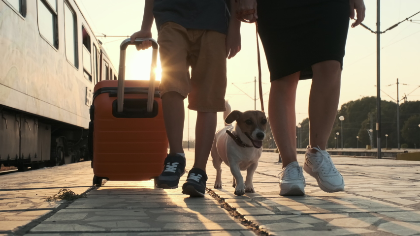 Slow motion happy boy with a woman and a dog Jack Russell walk along the platform of the train station, to the train with an orange suitcase in the rays of a bright sunset. The family goes on a trip.  | Shutterstock HD Video #1037638727