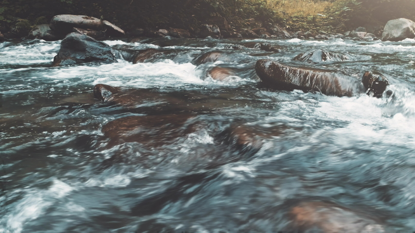 Wild Mountain River Close Up Abundant Clear Stream. Detail Static Shot of Babbling Creek with Stone Boulders Flowing. Rock Rapid in Swift Splashing Water. Ukraine, Carpathian. Footage Shot in 4K | Shutterstock HD Video #1037948027