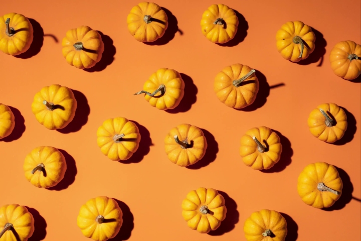 Fall Pumpkin Stop-Motion on an orange theme background - top view wiggling motion for Thanksgiving | Shutterstock HD Video #1038809357