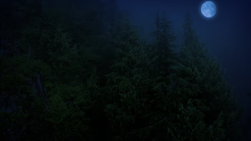 Flight Over Scary Forest With Full Moon