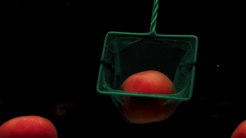 A green scoop-net catches a red tomato and pulls it up in transparent water on black background. Fresh organic vegetables in aquarium. Grocery store, healthy food, vegetarianism. Slow Motion. Close-up   Shutterstock HD Video #1039411847