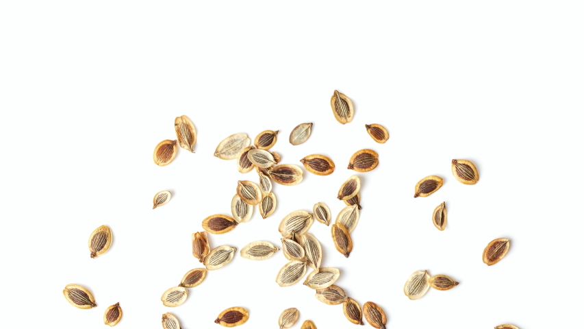 Panning heap dill seed isolated on white background. top view | Shutterstock HD Video #1040529737