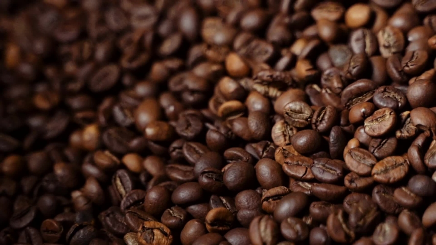 Coffee bean roasting Process Coffee Roaster. Coffee beans in the roaster. | Shutterstock HD Video #1041455167