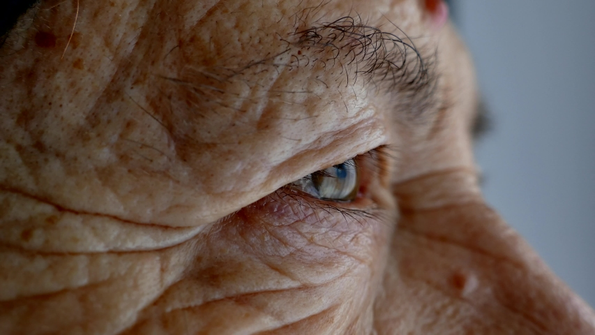 The face and eyes of an old man. Large wrinkles on the face of an old woman. Face close up. A senior citizen looks into the distance. | Shutterstock HD Video #1043693047
