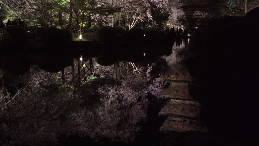 Cherry blossoms in Kyoto, Japan | Shutterstock HD Video #1044916417