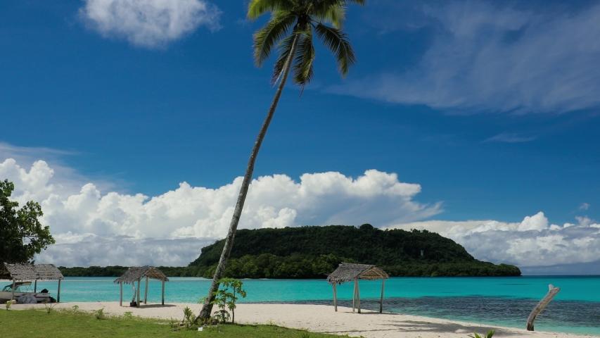 Port Orly sandy beach with palm trees, Espiritu Santo Island, Vanuatu. | Shutterstock HD Video #1045434607