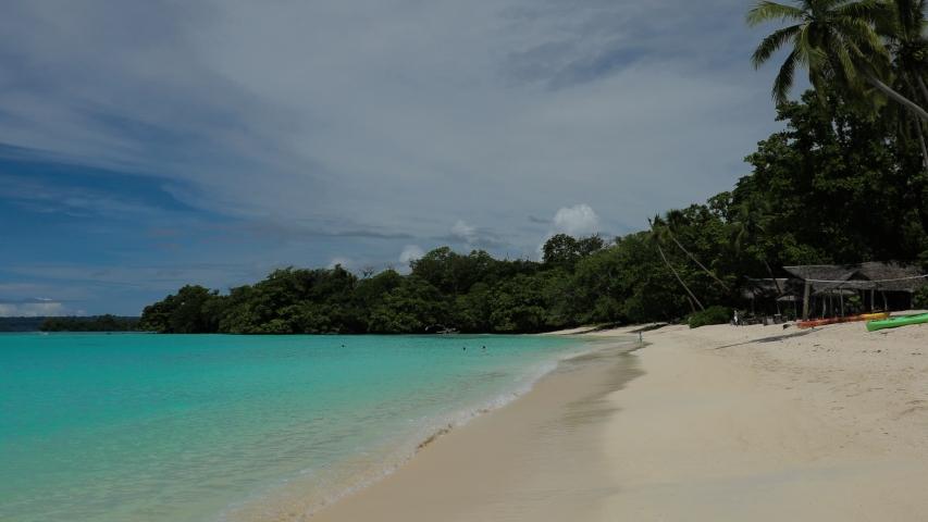 Port Orly sandy beach with palm trees, Espiritu Santo Island, Vanuatu. | Shutterstock HD Video #1045434637
