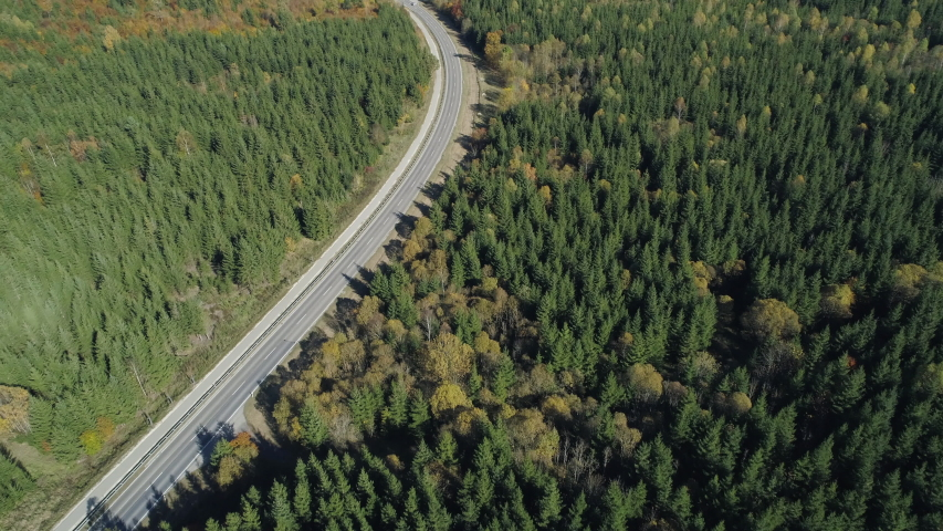 Aerial view of road with traffic through autumnal forest, Germany | Shutterstock HD Video #1046743747