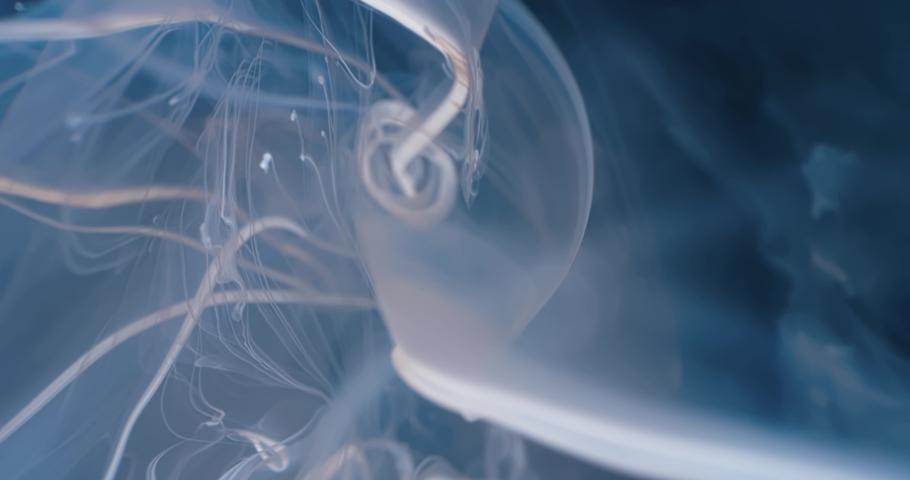 White  Fluid  in Motion underwater. Black Background. Macro.  Liquids Threads. | Shutterstock HD Video #1046871037