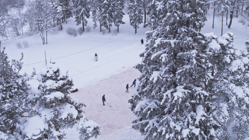 In the snowy forest, children play hockey, flying between fir trees. Christmas | Shutterstock HD Video #1047012727