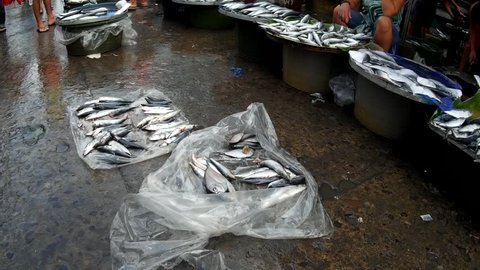 LAGUNA, PHILIPPINES - JUNE 23, 2015: Fish sold at street wet market due to lack of market facilities