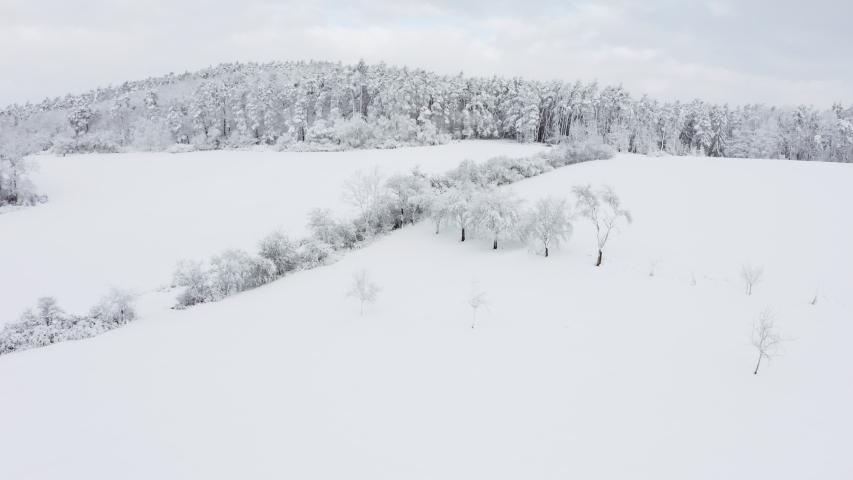 Rural landscape in winter with snow, Frankenhoehe, Franconia, Germany. | Shutterstock HD Video #1049570737