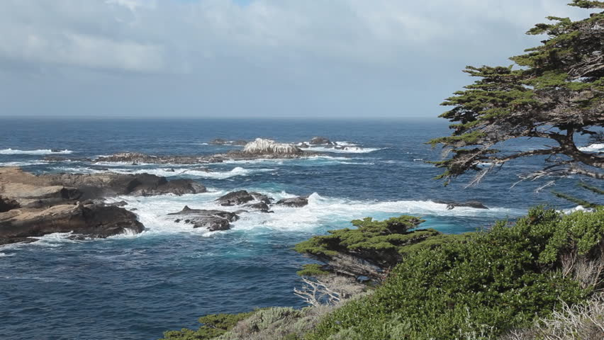 Pacific ocean from Cypress Grove Trail at Point Lobos State Natural Reserve in California, with Monterey Cypress trees in the foreground.