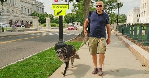 A man walks his dog near the Library of Congress in the Capitol Hill district of Washington, D.C.