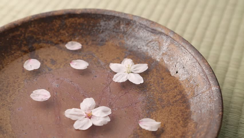Cherry blossoms on water in a ceramic plate