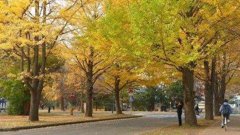Sapporo, Japan - Nov 01 : College campus at fall season