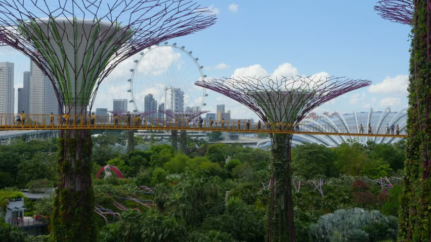 4K, Singapore, park Gardens by the Bay with it's famous supertrees.